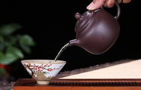 紫砂壶泡什么茶好?