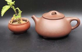 紫砂壶泡不同的茶叶有什么讲究?