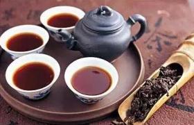 紫砂壶泡一种茶还是一类茶
