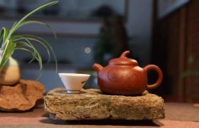 紫砂壶适合泡什么茶好?
