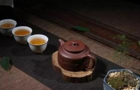 用什么茶来养壶比较好