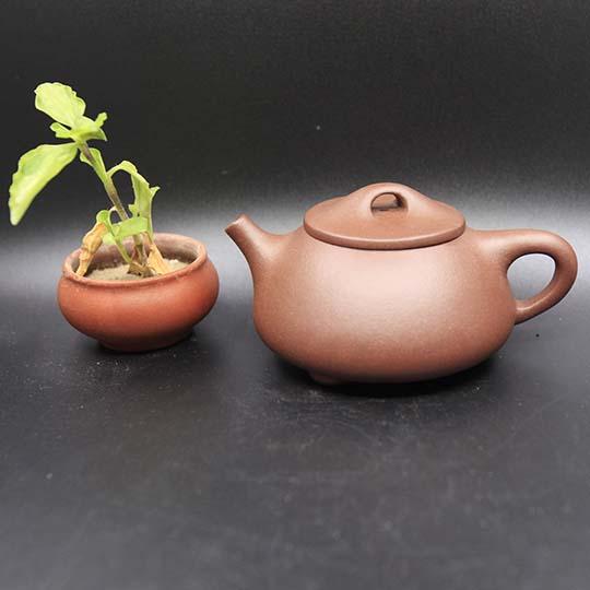紫砂壶什么壶型最好用?  2